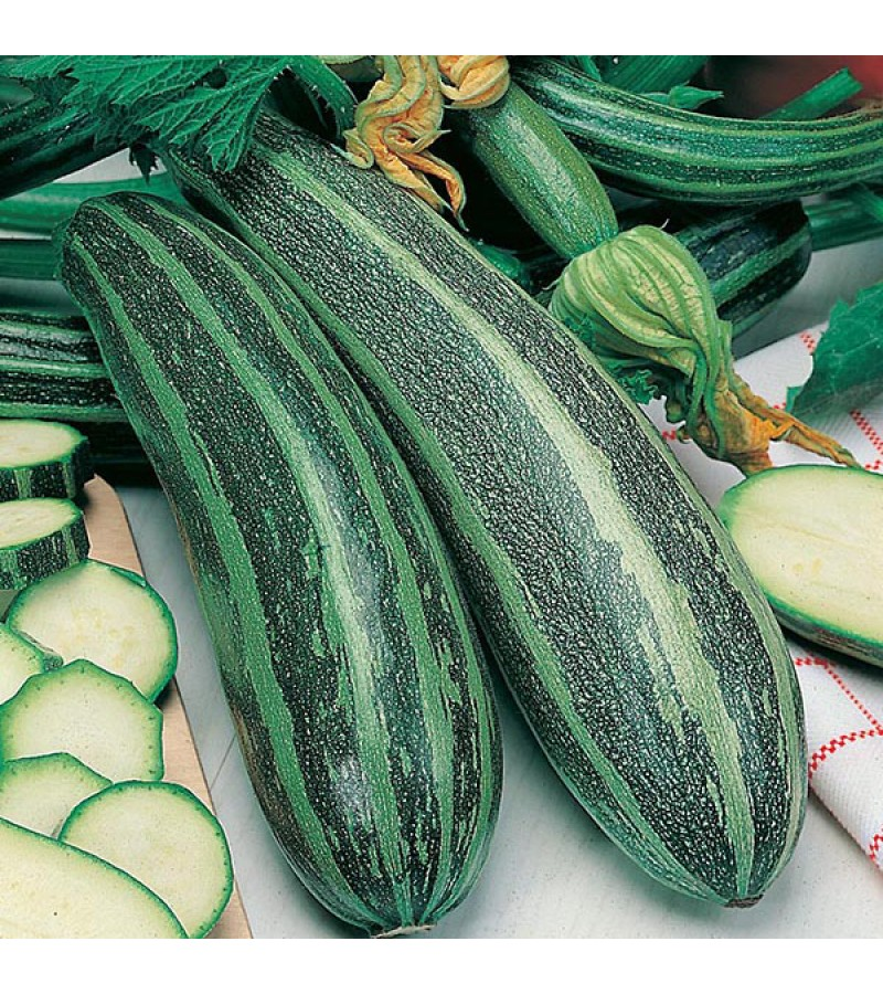 Mr Fothergill's Marrow Long Green Bush 2 Seeds (20 Pack)