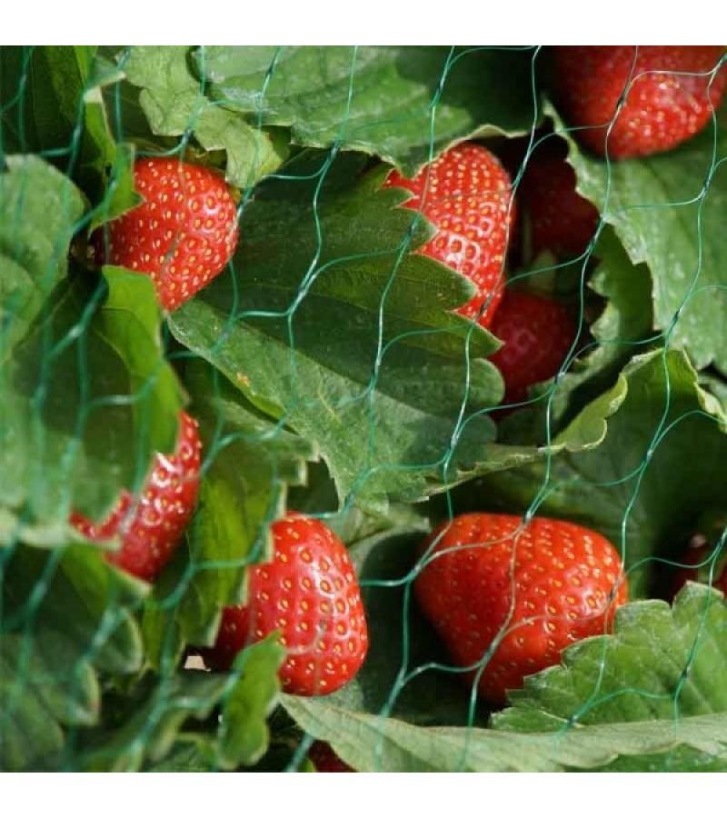 Garden Netting, 15mm, 2x10m, Green