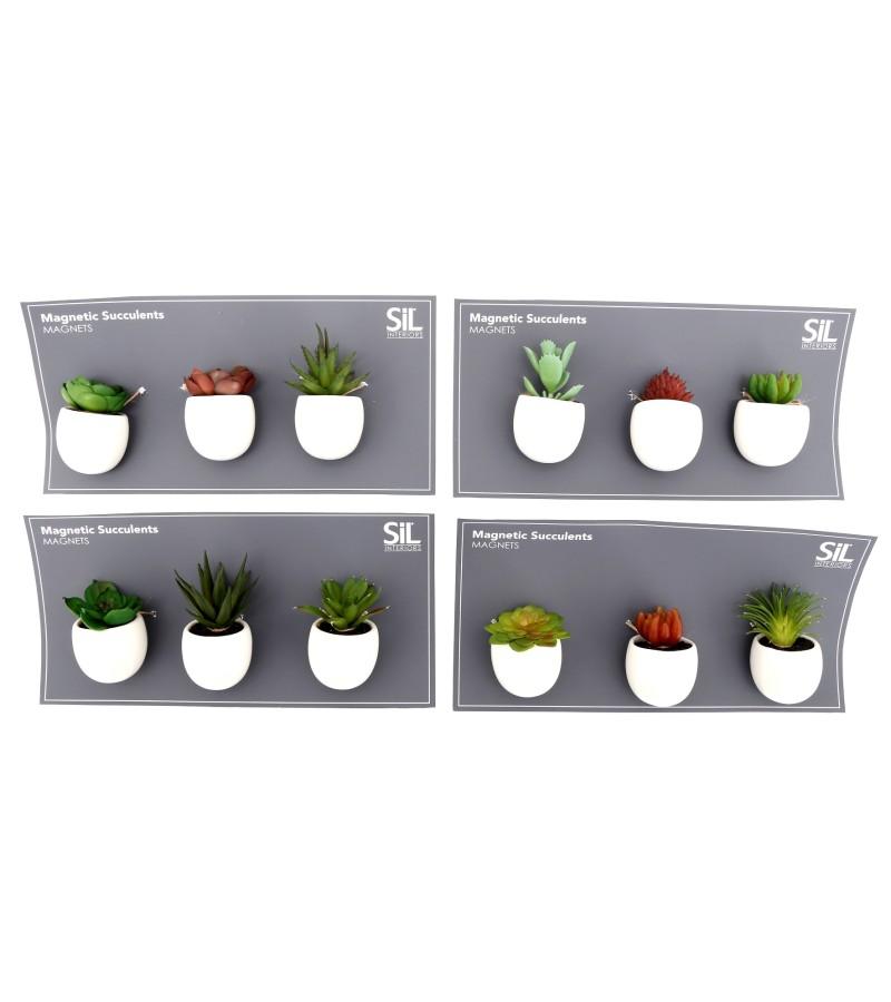 Succulent Magnets (Set of 3)