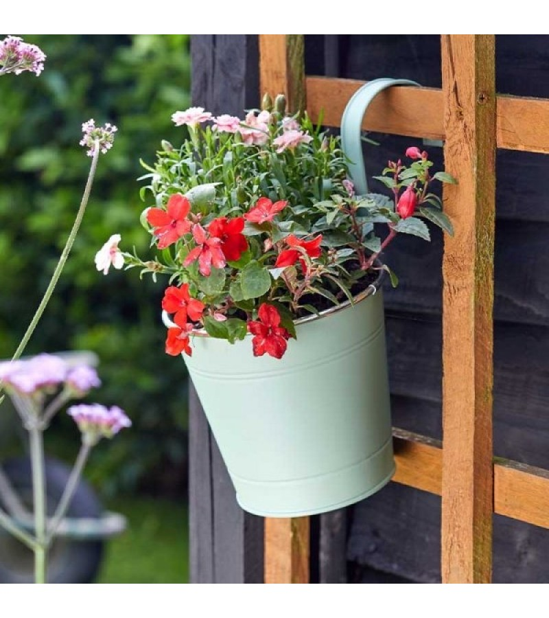 6in Fence & Balcony Hanging Pot - Sage