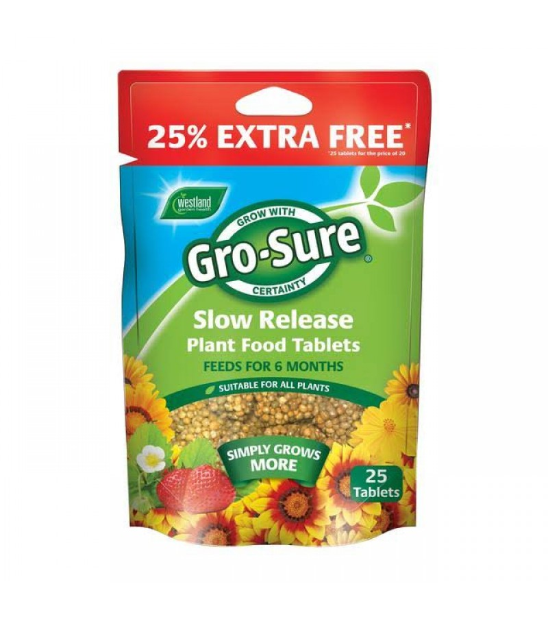 Gro-Sure Slow Release Plant Food Tablets (25 Pack)