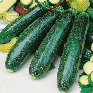 Mr Fothergill's Courgette Zucchini Seeds (20 Pack)