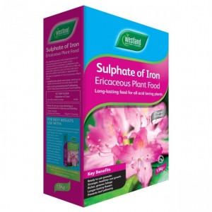 Westland Sulphate of Iron Ericaceous Plant Food 1.5KG
