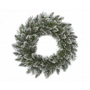 Frosted Finlay Wreath 50cm