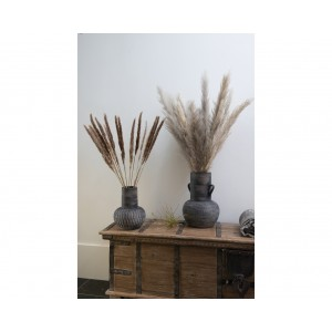 Natural Pampus Plume Bunch 100cm