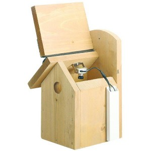Gardman Bird Nest Box With Camera View