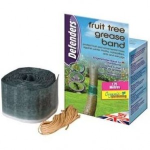 Defenders Fruit Tree Grease Band 1.75m