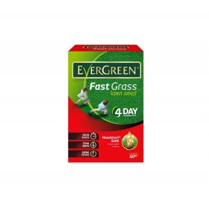 Evergreen Fast Grass Lawn Seed 2.5KG