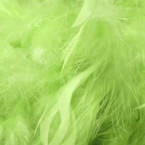 Lime Green Feathers 5g