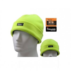 Pro Climate Hi Vis Thinsulate Beanie Hat (One Size)