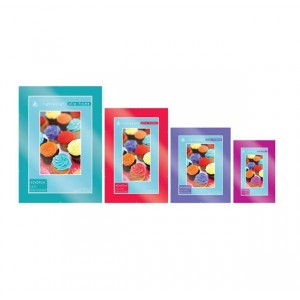 "Home Collection Styrene Clip Frame 24"" x 32"""