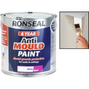 Ronseal Anti-Mould 750ml White Matt
