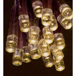 Premier Battery Operated Warm White LED Bulb Lights (20 Lights)