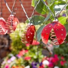 10 Ladybird Solar String Lights