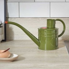 Home and Balcony Watering Can 1L Sage Green