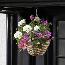12in Trinity Hanging Basket