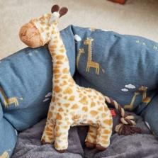 Junior Giraffe