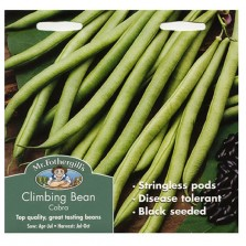 Mr Fothergill's Climbing Bean Cobra Seeds (75 Pack)