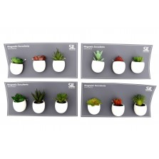 Succulent Magnets (Set of 3)
