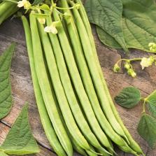 Mr Fothergill's Climbing Bean Python Seeds (50 Pack)