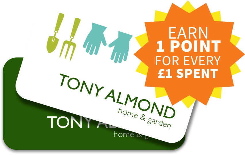 Earn points for every £1 spent