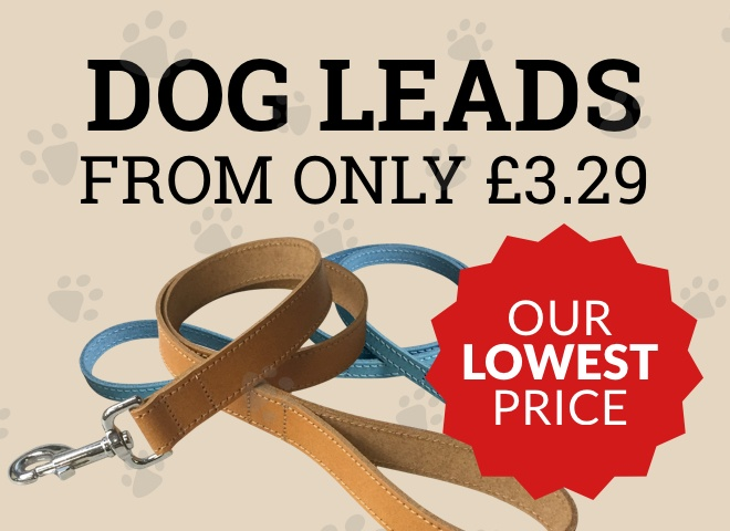 Dog Leads from only £3.29