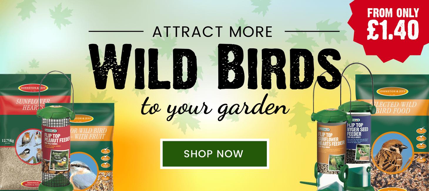 Wild Bird Seeds