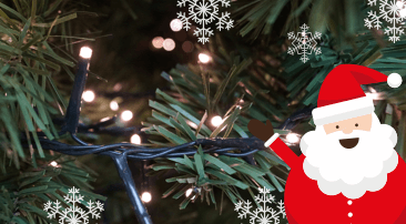 Christmas Lights: Buying Guide