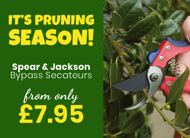 Spear and Jackson Bypass Secateurs