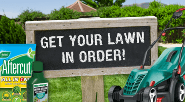 Get your lawn in order!