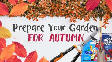 Prepare your garden for autumn