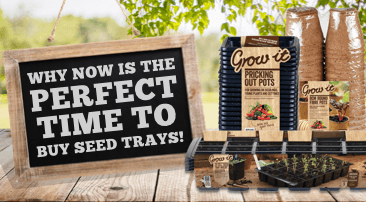 Why now is the perfect time to buy seed trays!